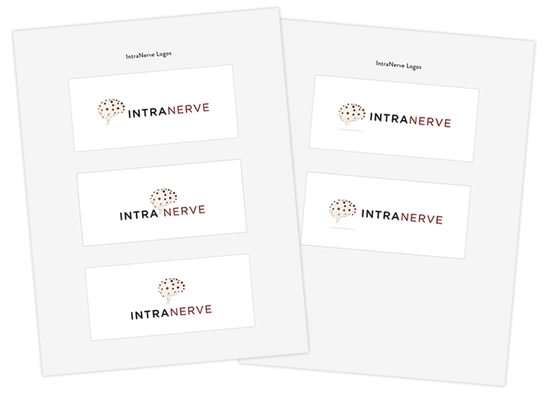 IntraNerve Round 3